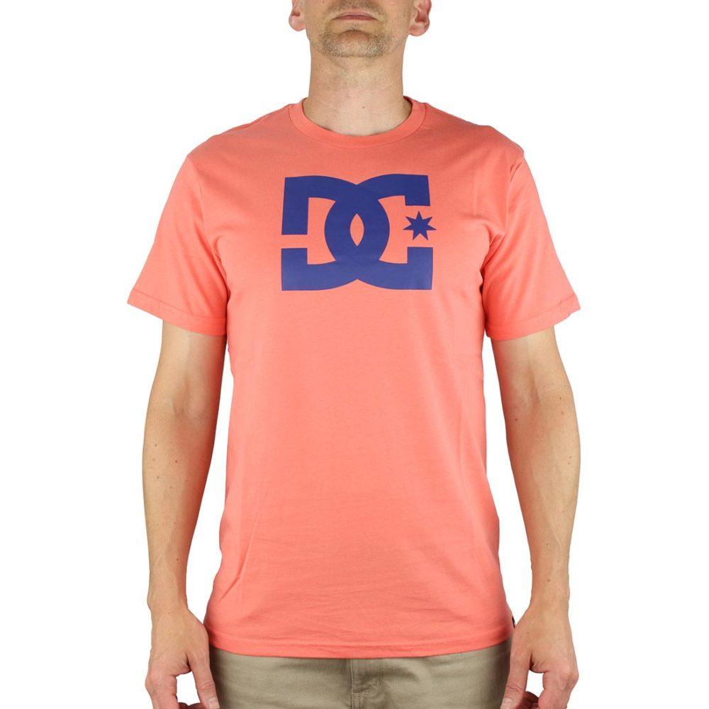 df2efc22898e DC Shoes Star S S T-Shirt - Porcelain Rose   Sodalite Blue