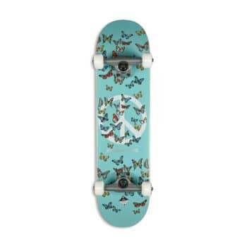Primitive Codes Complete Skateboard - Multi